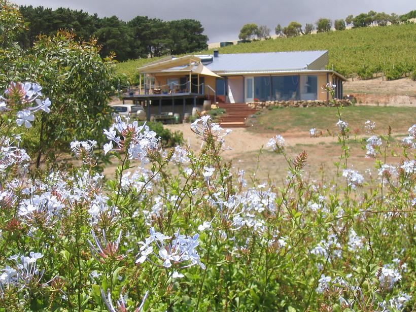 The Blue Grape Vineyard Accommodation - Accommodation Batemans Bay