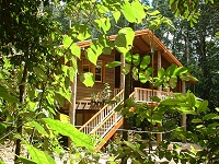 Rivers Edge Rainforest Retreat - Accommodation Batemans Bay