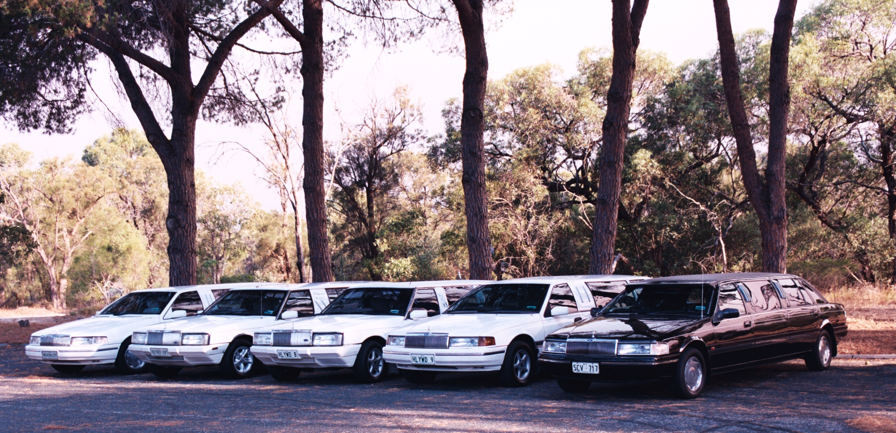 Hollywood VIP Limousines - Accommodation Batemans Bay