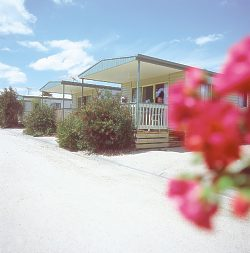 Eldorado Tourist Park - Accommodation Batemans Bay