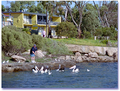 Almonta Holiday Apartments - Accommodation Batemans Bay