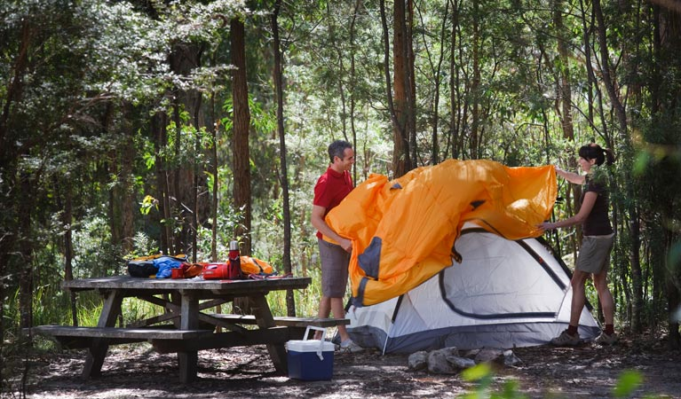 Bald Rock campground and picnic area - Accommodation Batemans Bay