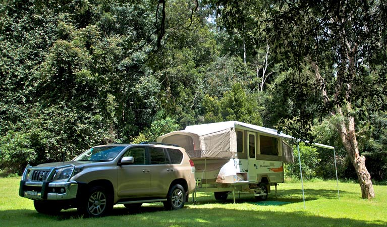 Gloucester River campground - Accommodation Batemans Bay