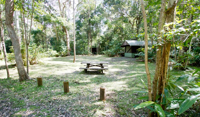 Iron Pot Creek campground - Accommodation Batemans Bay
