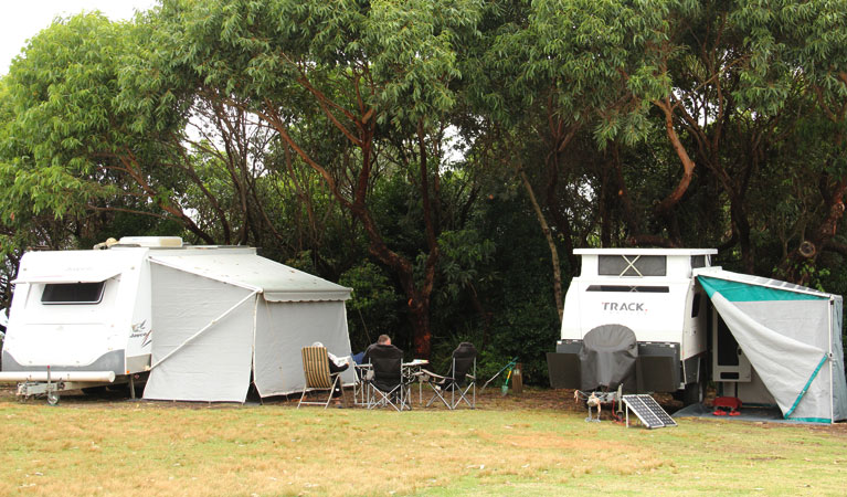 Pretty Beach campground - Murramarang National Park - Accommodation Batemans Bay