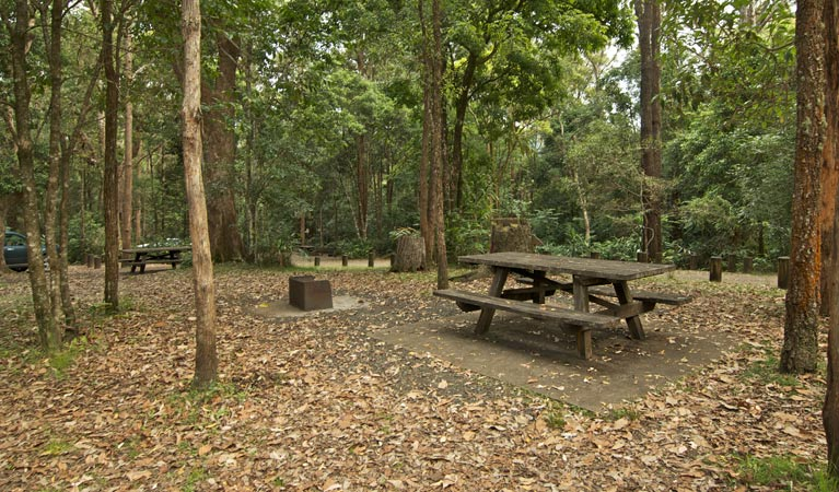 Sheepstation Creek campground - Accommodation Batemans Bay
