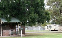 Warialda Caravan Park - Accommodation Batemans Bay