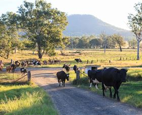 Tommerups Dairy Farmstay - Accommodation Batemans Bay