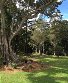 Beechmont Retreat - Accommodation Batemans Bay