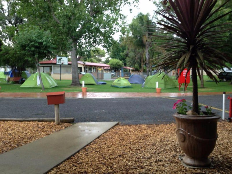 Young Caravan Tourist Park - Accommodation Batemans Bay
