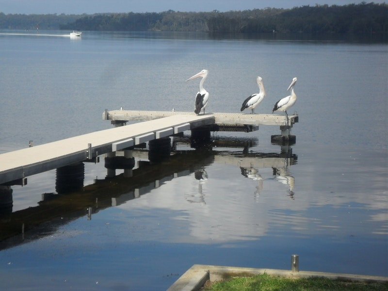 Basin Cabin - Accommodation Batemans Bay
