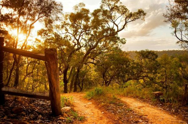 Kurrajong Trails and Cottages - Accommodation Batemans Bay