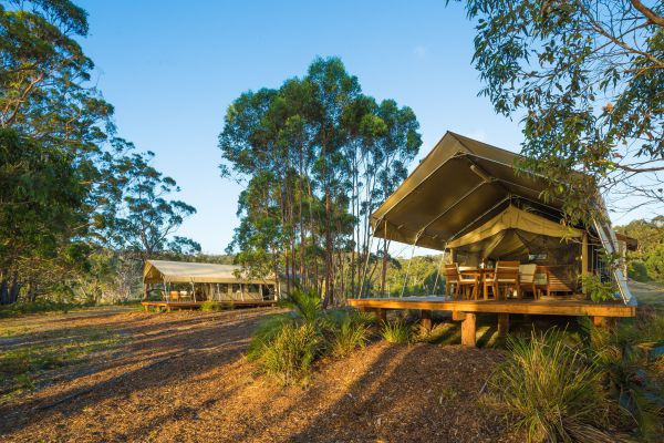 Tanja Lagoon Camp - Accommodation Batemans Bay