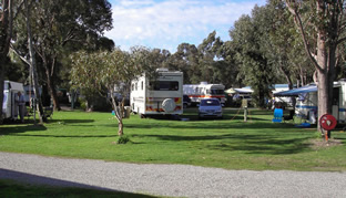 Pinjarra Caravan Park - Accommodation Batemans Bay
