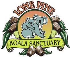Lone Pine Koala Sanctuary - Accommodation Batemans Bay