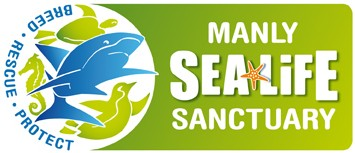 Manly SEA LIFE Sanctuary - Accommodation Batemans Bay