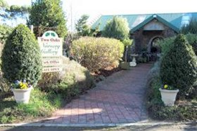 Two Oaks Nursery Gallery and Cafe - Accommodation Batemans Bay
