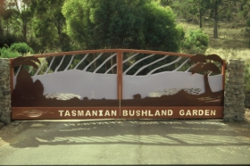 Tasmanian Bushland Garden - Accommodation Batemans Bay