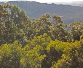 Conondale National Park - Accommodation Batemans Bay