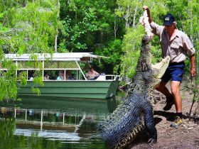 Hartleys Crocodile Adventures - Accommodation Batemans Bay