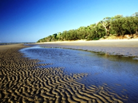 Burrum Coast National Park - Accommodation Batemans Bay