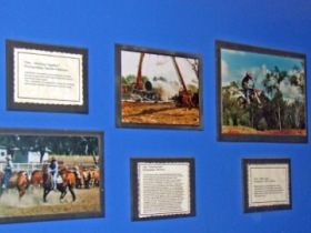 Town Hall Photographic Display - Accommodation Batemans Bay