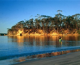 Batemans Marine Park - Accommodation Batemans Bay