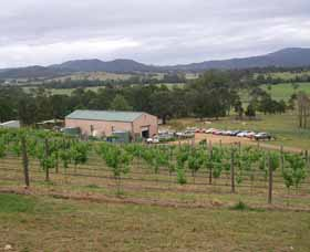 Villa d Esta Vineyard - Accommodation Batemans Bay