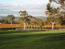 Top Note Vineyard - Accommodation Batemans Bay
