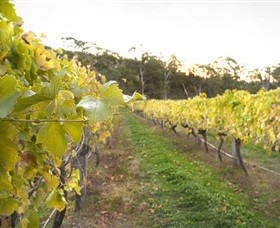 Harcourt Valley Vineyards - Accommodation Batemans Bay