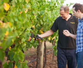 Fratin Brothers Vineyard - Accommodation Batemans Bay