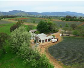 Schmidts Strawberry Winery - Accommodation Batemans Bay