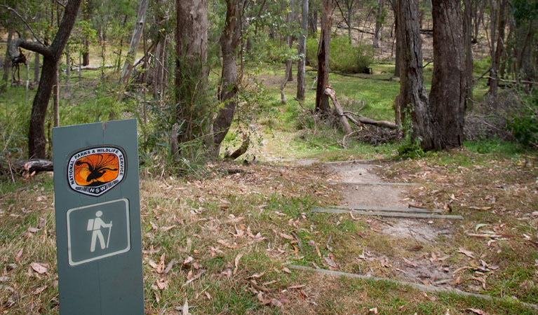 Moolarben picnic area - Accommodation Batemans Bay