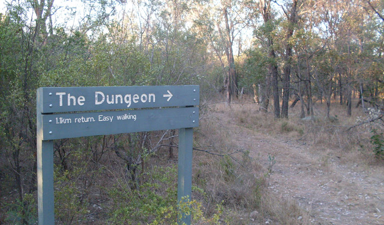 Dungeon lookout - Accommodation Batemans Bay