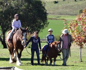 Bathurst Farm Experience - Accommodation Batemans Bay