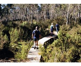 Hume and Hovell Walking Track - Henry Angel Trackhead - Accommodation Batemans Bay