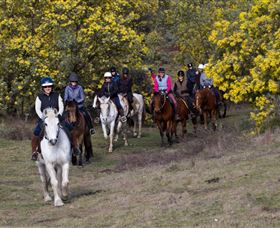 Burnelee Excursions on Horseback - Accommodation Batemans Bay