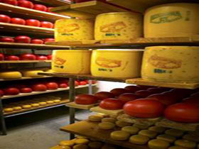 Alexandrina Cheese Company - Accommodation Batemans Bay