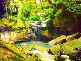 Carnarvon Gorge Carnarvon National Park - Accommodation Batemans Bay