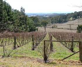 Habitat Vineyard - Accommodation Batemans Bay