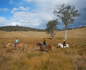 Chapman Valley Horse Riding - Accommodation Batemans Bay