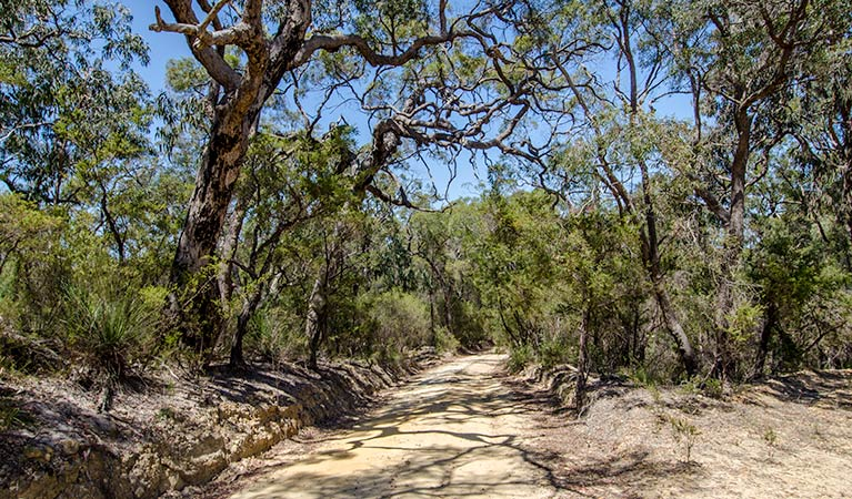 Howes trail - Accommodation Batemans Bay