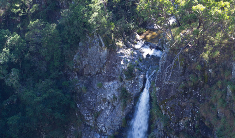 Lyrebird Falls walking track - Accommodation Batemans Bay