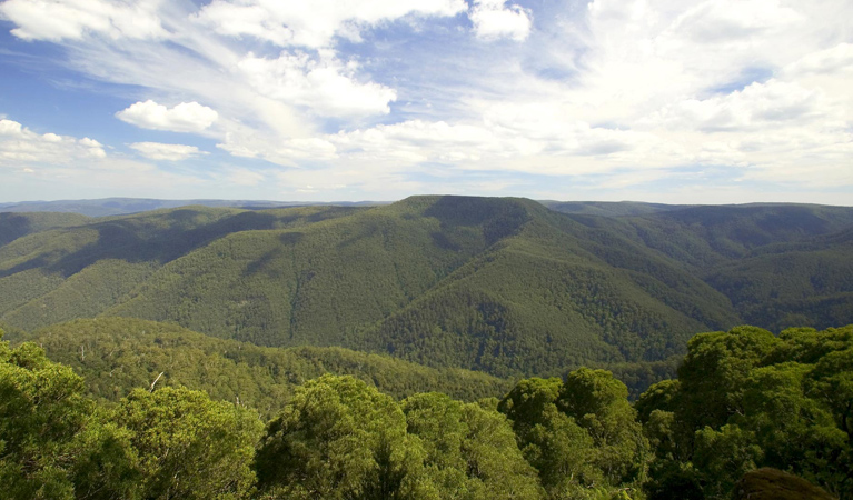 Barrington Tops National Park - Accommodation Batemans Bay