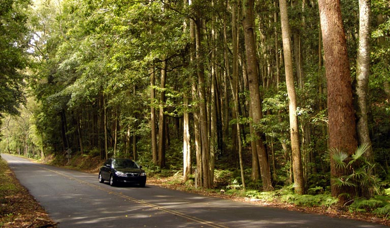Greater Blue Mountains drive - Accommodation Batemans Bay