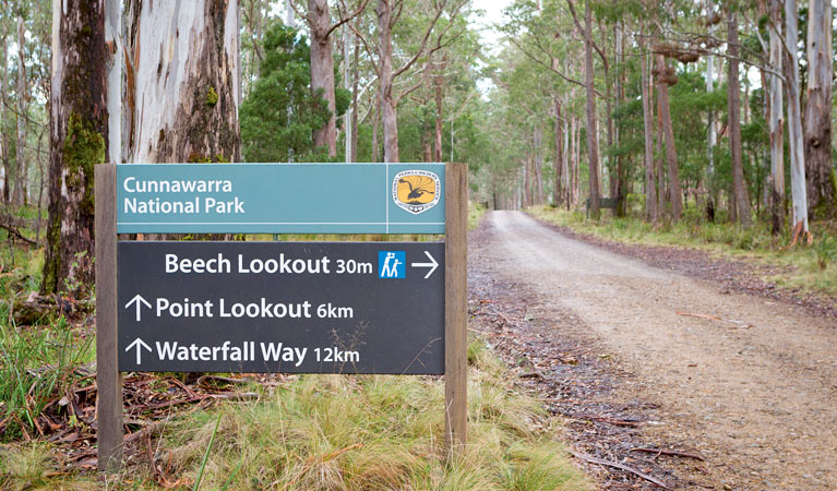 Beech lookout - Accommodation Batemans Bay