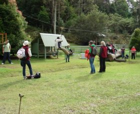 Forest of Tranquillity - Australian Rainforest Sanctuary - Accommodation Batemans Bay