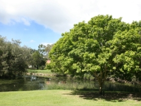 Hervey Bay Botanic Gardens - Accommodation Batemans Bay