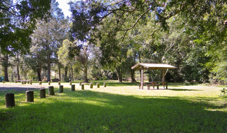 Moore Park picnic area - Accommodation Batemans Bay