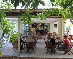 Medowie Macadamias - Accommodation Batemans Bay